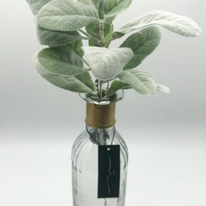Lambs ear spray