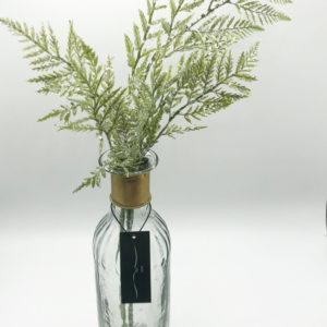 silver fern
